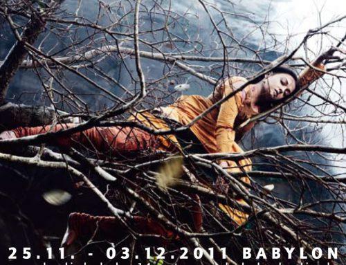 Die Filme 2011